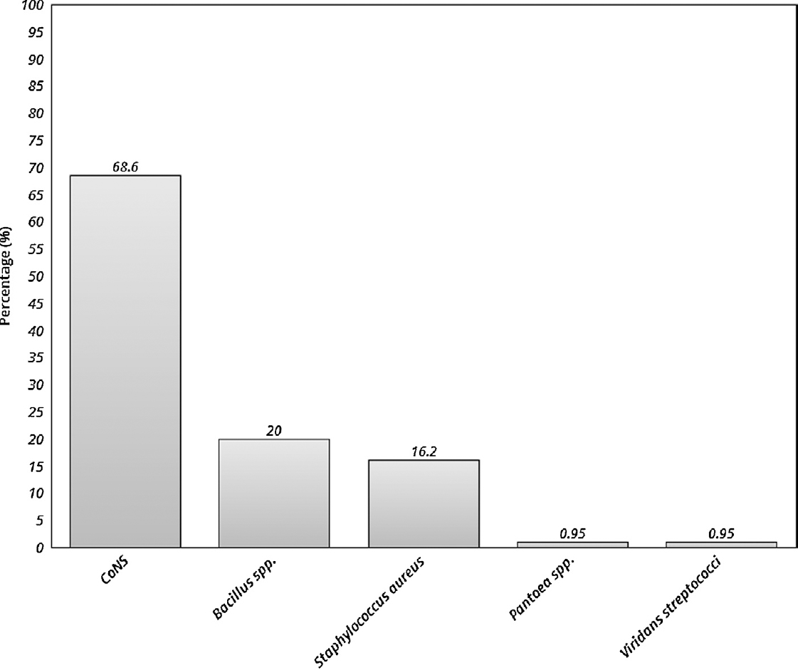 Figure 2: Percentages of bacterial isolates found in cell phones of medical students. CoNS = coagulase-negative staphylococci.