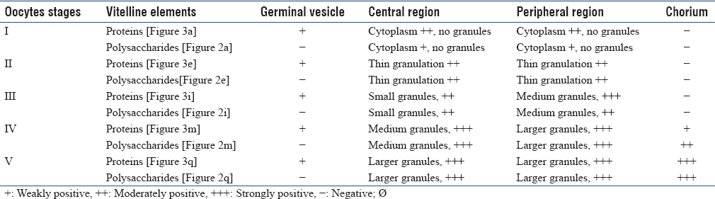 Table 1: Histochemistry results of ovary of the tick <i>Rhipicephalus sanguineus</i> of control Groups I and II